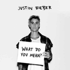 JustinBieberWhatDoYouMeanCover.png