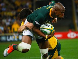 Springboks vs Australia 8 September