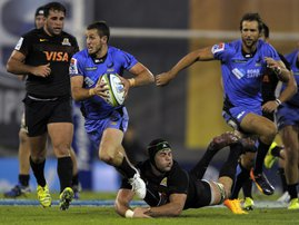 WesternForce