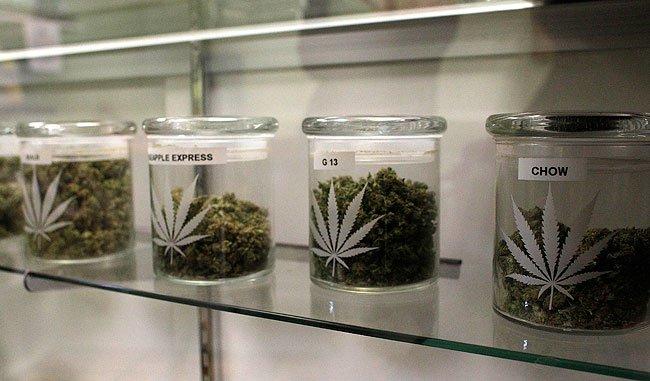20121210_medical-marijuana_33.jpg