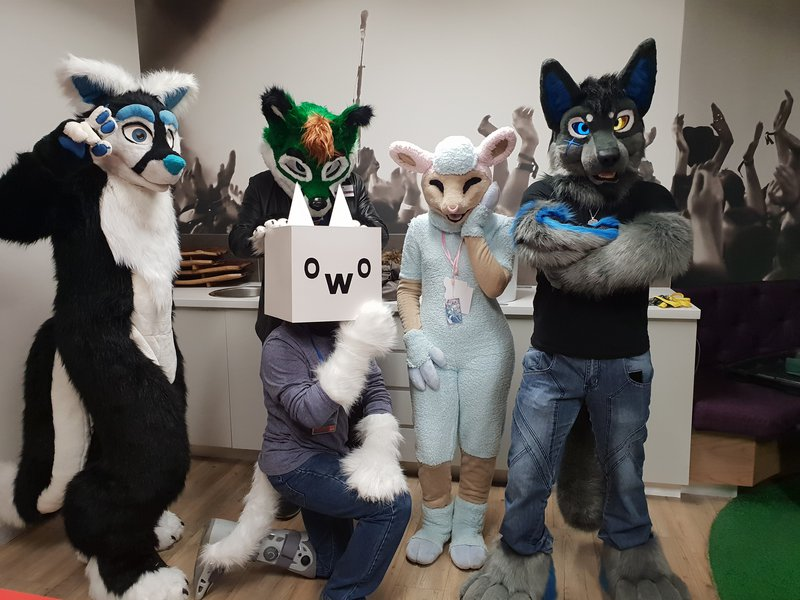 furries group shot