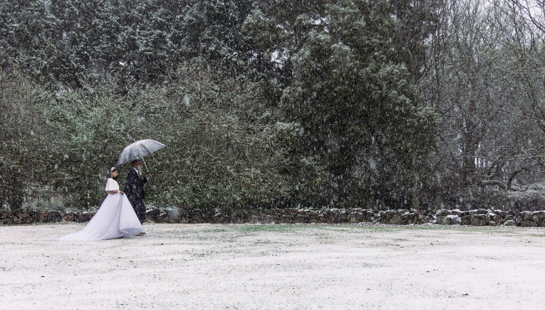 Local Durban couple celebrate marriage in winter wonderland pictures