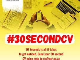 The 30 Second CV