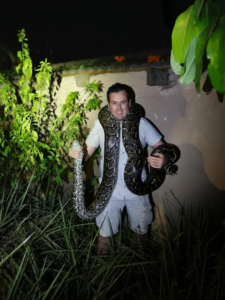 PHOTOS: Massive python wrestled out of Waterfall garden