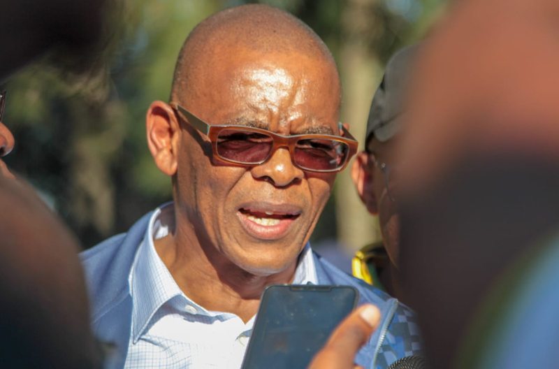 Magashule: 'We must deal with undocumented foreigners'