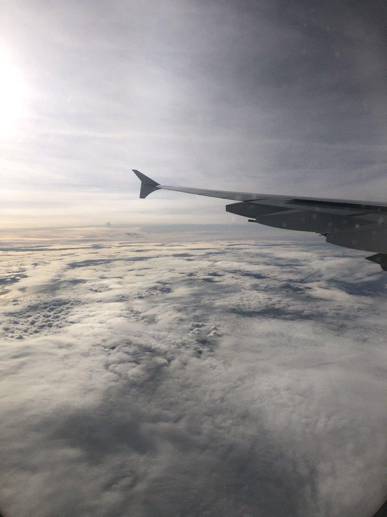 Damon's flight into London one year ago