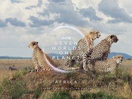 BBC Earth - Africa