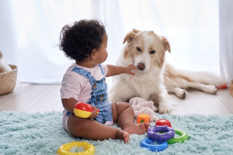 Dog bites baby in the face!