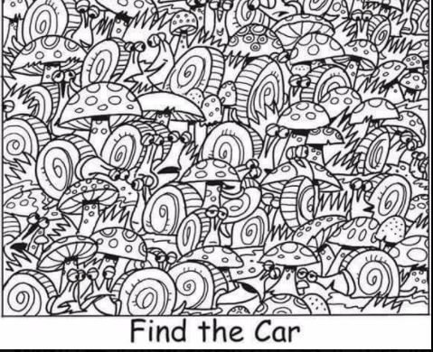 can you find the car in this picture