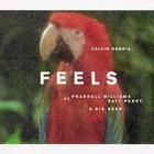 Feels - Calvin Harris with Katy Perry, Pharrell Williams and Big Sean