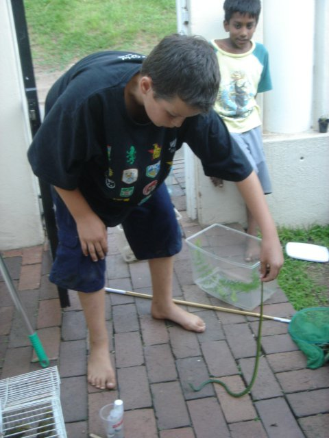 Nick Evans catching a bush snake at 8 years old