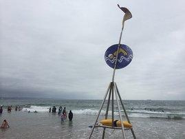 Durban_beach_swim_lifeguard_di_VtOfxnn.jpg