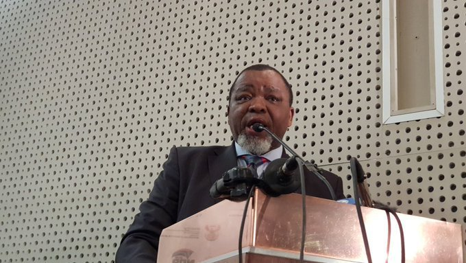 Gwede Mantashe Profile