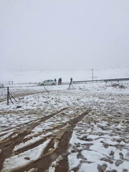 Snow chasers cost farmers thousands in damages