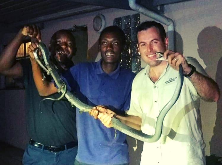 snake rescue 10