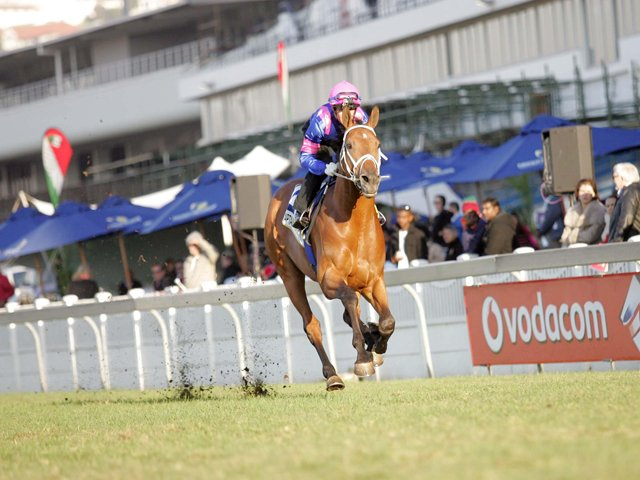 Durban july betting tips 2021 sc sports betting