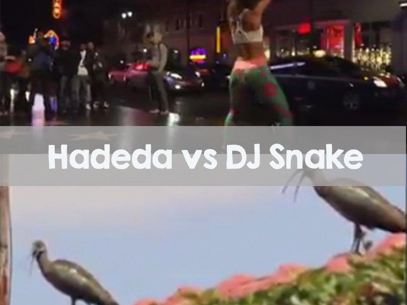 Hadeda vs DJ Snake Mash-up
