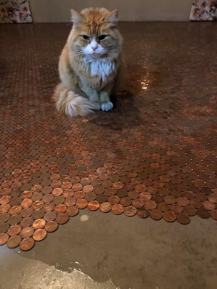 Karmen Swanepoel coins