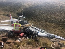Dargle-plane-crash