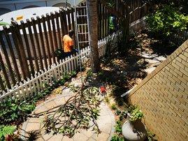 Keri's garden is ruined
