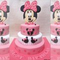 Minnie Mouse Cake disaster