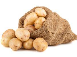 Potatoes in a sack