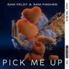 Pick Me Up  Sam Feldt