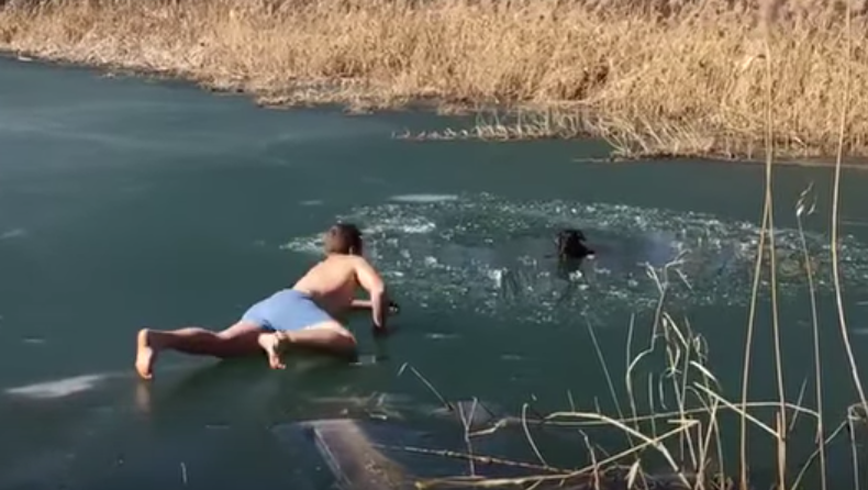 man falls in river to rescue dog