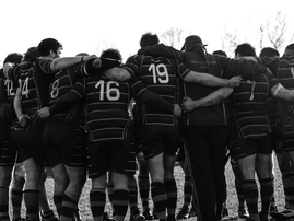 rugby pixabay