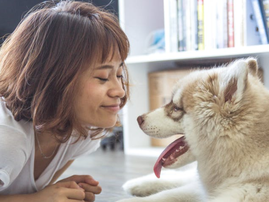 dog and owner pexels