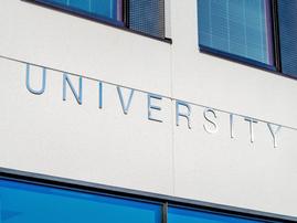 university pexels