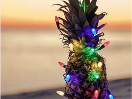 Christmas Pineapple