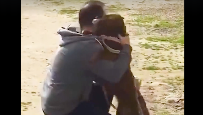 dog and owner reunited