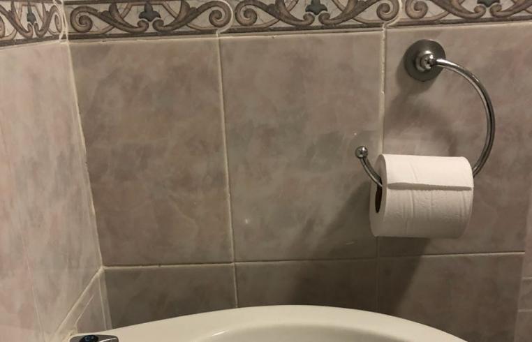 damon beard toilet