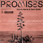 Calvin Harris featuring Sam Smith  promises