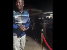 Julius Malema in the club
