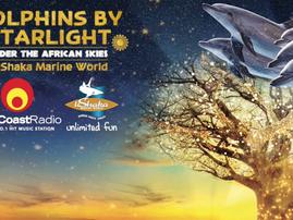 dolphins by starlight ushaka
