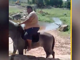 overweight man on horse