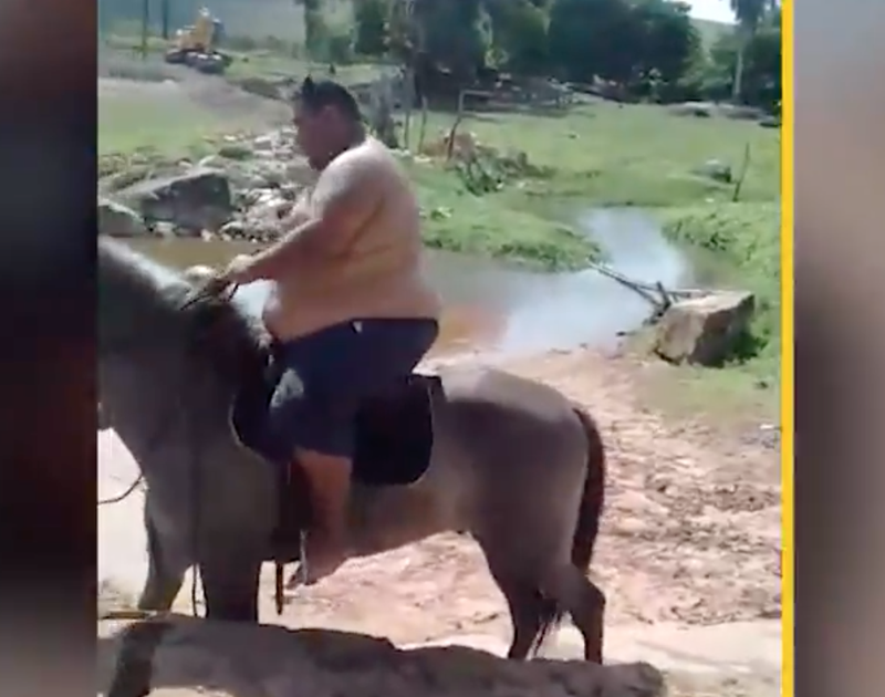 overweight man on horse