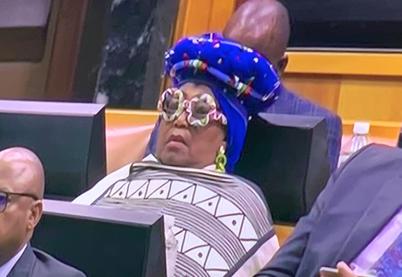 ANC MP Vatiswa Bam-Mugwanya at SONA 2019 / Twitter