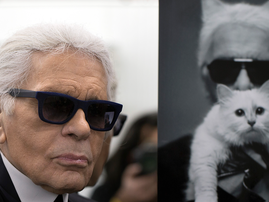 Karl Lagerfeld and his cat / AFP