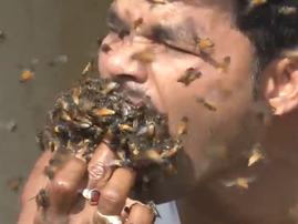 Man shoving bees into his mouth / New York Post