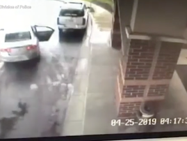 Boy saves sister from hijacking