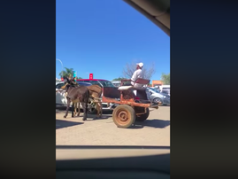 South African parks 'Donkiekar' in parking lot