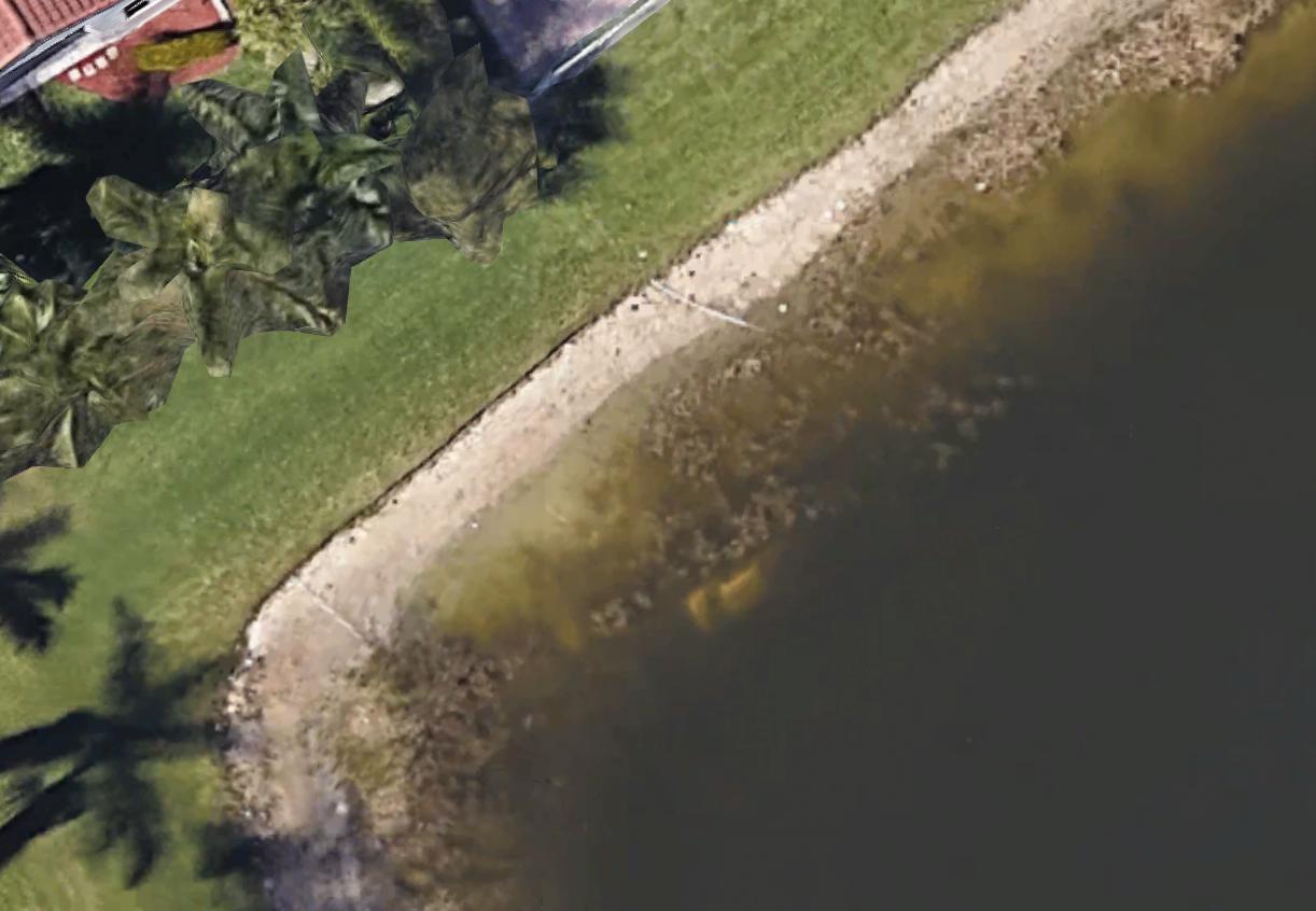 Car in lake in Florida USA