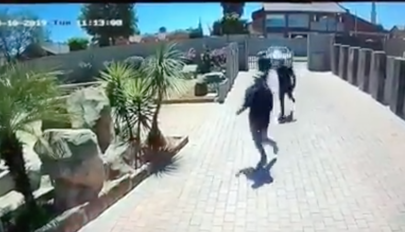 Robbers flee after failed house robbery