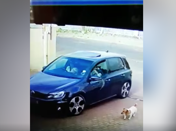 Victims fight back against hijackers