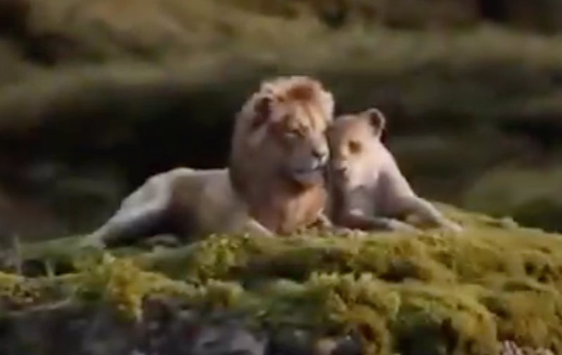'The Lion King' trailer / Twitter