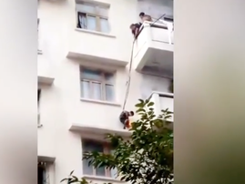granny lowers 7-year-old by rope over ledge to rescue cat