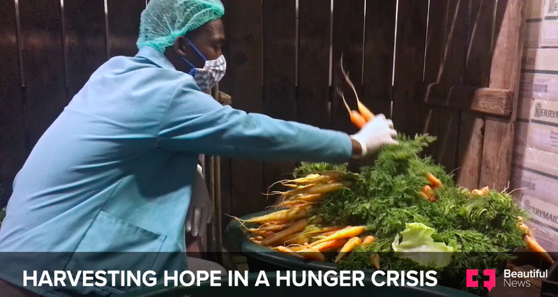 Harvesting hope in a hunger crisis